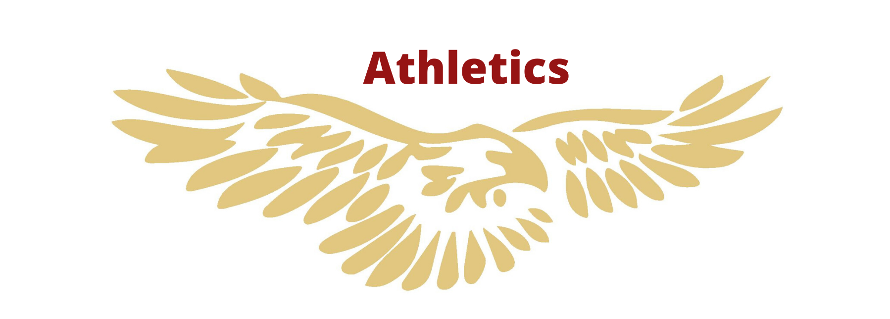 Eagles mascot for Saint Thomas More School Athletics